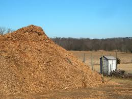 giant pile by small shed